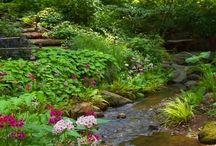 Idées jardins inédites