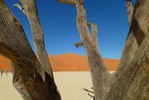Voyage en Namibie / Les plus belles photos de voyages en Namibie