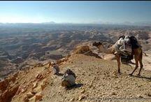 Voyage en Egypte / Les plus belles photos de voyage en Egypte