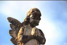 Finados e suas flores e cores...e saudades! / Dia de Finados 02/11/2014 Cemitério da Saudade - Jaboticabal - SP
