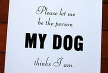 Pitbulls / No small, little dogs.... but Real Dogs! Pittbulls, Boxers etc... / by Chris