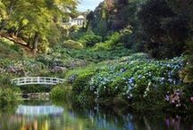 Cornish landscapes and gardens