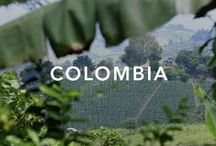 Colombia / To historic city centres and towns, highlands of the Andes mountains, Amazon rainforest, tropical grassland and both Caribbean and Pacific coastlines. Colombia has so much to offer.