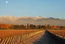 Fotos de Mendoza / Disfruta de los paisajes de nuestra provincia