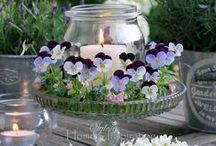 Hobby♡ ♥ ☆ ★ / Lakberendezés, kertészkedés, kretivitás...