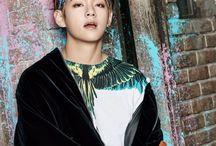 V (Kim Tae Hyung)