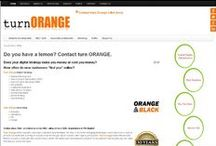 Website Portfolio / developed by Turn Orange Ltd. www.TurnOrange.com