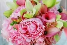 Oakes Fields Bouquets