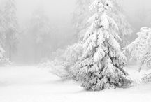 Snow atmospheres ❄️ / PIN UNLIMITED ONLY FOR MY FOLLOVERS similar images in my board CHRISTMAS ATMOSPHERE