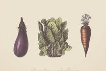 Health & Vitality / by Chelsea Eismann, RDN