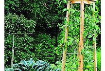 Outdoor and Garden Ideas / by Deb Shampine