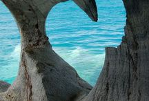 love. / world love. / by Janine Van de Gryp