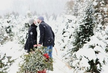Holiday Love / by Aubrey Boyer