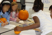 Autumn Fun / Activities and Lessons to make Autumn/Fall fun and engaging in the classroom.