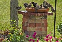 Backyard - Ideas & How To's / A collection of ideas and how-tos / by Barbara Miller