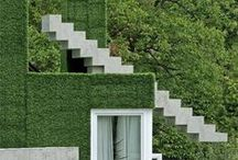   P   GREEN . WALL / by Patricia Gray   Interior Design Vancouver