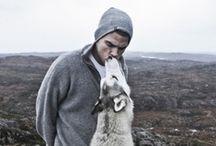 animal love <3
