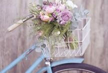 Flower Arrangements / by Laura Homich