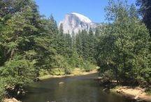 Yo, Yosemite! / Hiking, fishing, camping, oh my! Make Yosemite National Park your next travel destination.