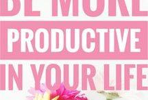 Organisation & Productivity