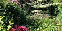 'le jardin de Brigitte'