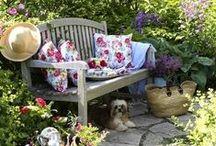 ~Garden and Terrace~