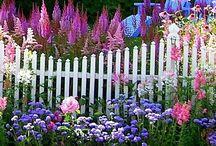 This Twilight Garden