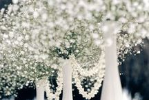 My Wonderland / That one day where I get to spend the rest of my life with the person I love the most. :) <3