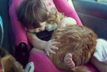 Pets / by Brittany Hamilton
