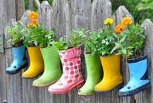 Gardening / Get inspiration for your yard with ideas for flowers, planters, landscaping, and more.