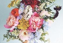 Fleurs & Plants