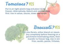 Food Storage / How to store fresh fruits, vegetables and perishable goods.