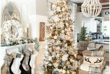Christmas Decor - DIY & Storage Tips / Do your Christmas decorations always get ruined because you don't store them properly? Or do you need some inspiration for great DIY Christmas decor? This board is perfect for you.