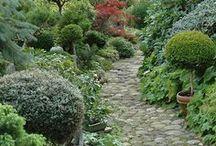 Garden Paths / by Julia Rule