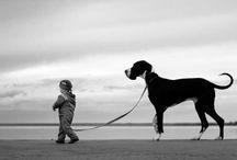 black & white / by Karen Pabst