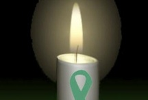 Mitochondrial disease & related illness / by Lori Fulton