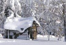 """Winter """"Wonderland""""  / by Ruthann Smithson Curtis"""