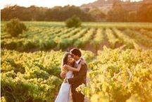 Winery Wedding / by Wedding Paper Divas
