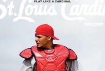 StL Cardinals!!!❤️❤️❤️ / by Tonya Young