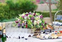 Celebrate / Party Ideas and Inspiration for all Occasions and Holidays / by Alegria Shoe Shop
