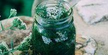 Herbalism Tips