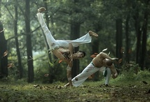 Martial Arts / by Jayson