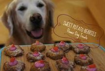 Recipes for the Puppies