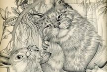 Art Ed. Animals