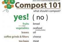 Composting / by Sonja McLaughlin