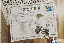 Science Penguin Resources / These are free and paid products from The Science Penguin's TeachersPayTeachers store. / by The Science Penguin