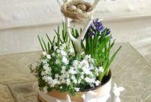 DIY Frühling / DIY-Frühling, DIY-Spring, Selbermachen zum Frühling, basteln für den Frühling, Ostern, Frühling, DIY, Osterkarten, basteln zu Ostern