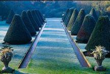 Garden / by Susan York