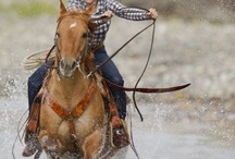 Equine Therapy / There is something about the outside of a horse that is good for the inside of a man.  ~Winston Churchill