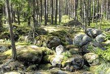 Bras Estonien